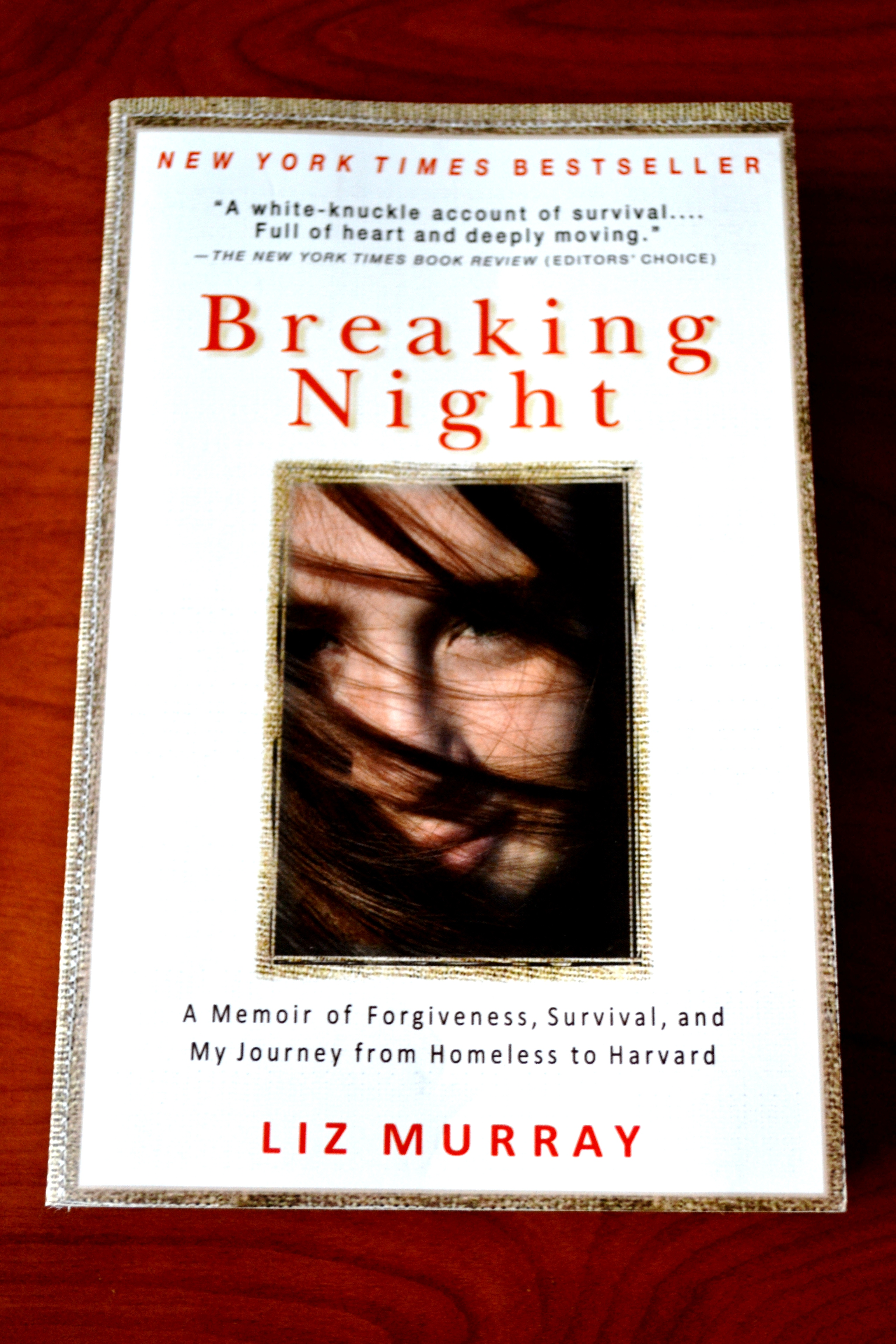 Breaking Night [Book Review] | Dig Into Books